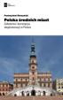 śleszyńskie-średnie miasta-deglomeracja_Klub Jagielloński_publikacja