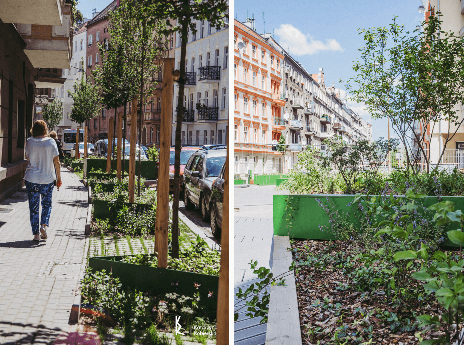 miasto gąbka - obserwtorium polityki miejskiej- sponge-środowisko (1)