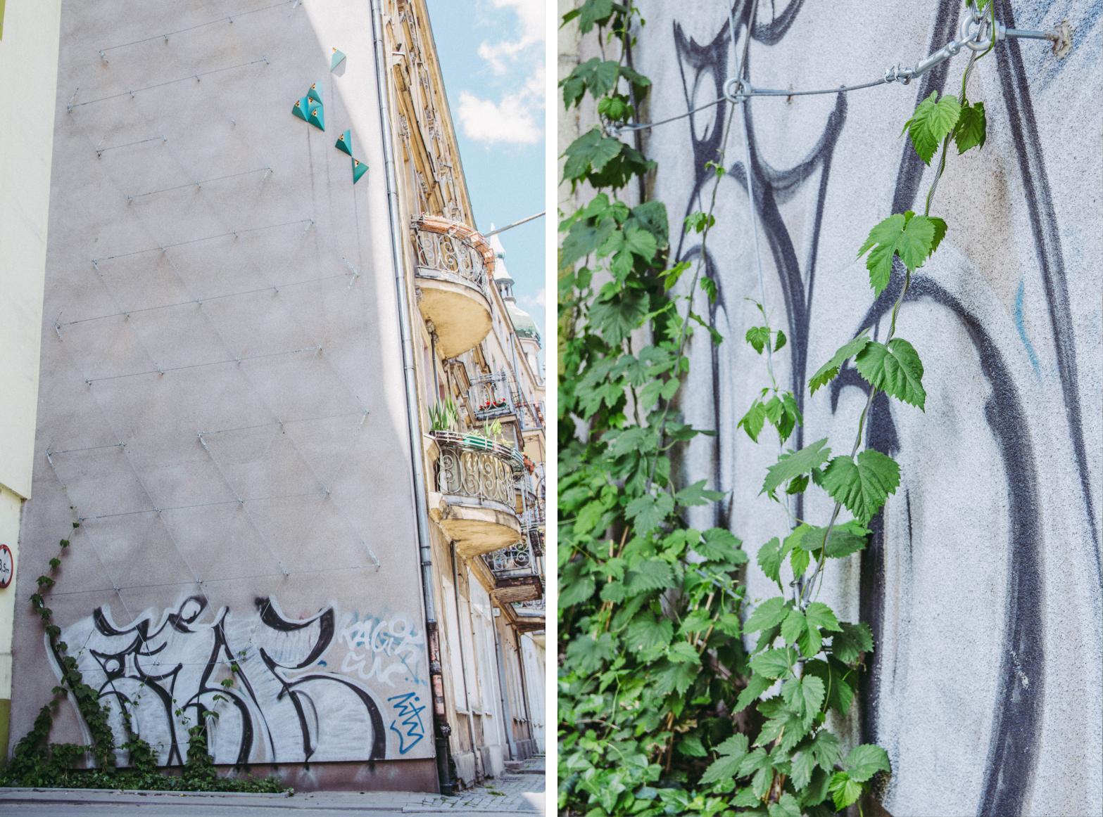 rozwiązania oparte na naturze - miasto gąbka - obserwtorium polityki miejskiej