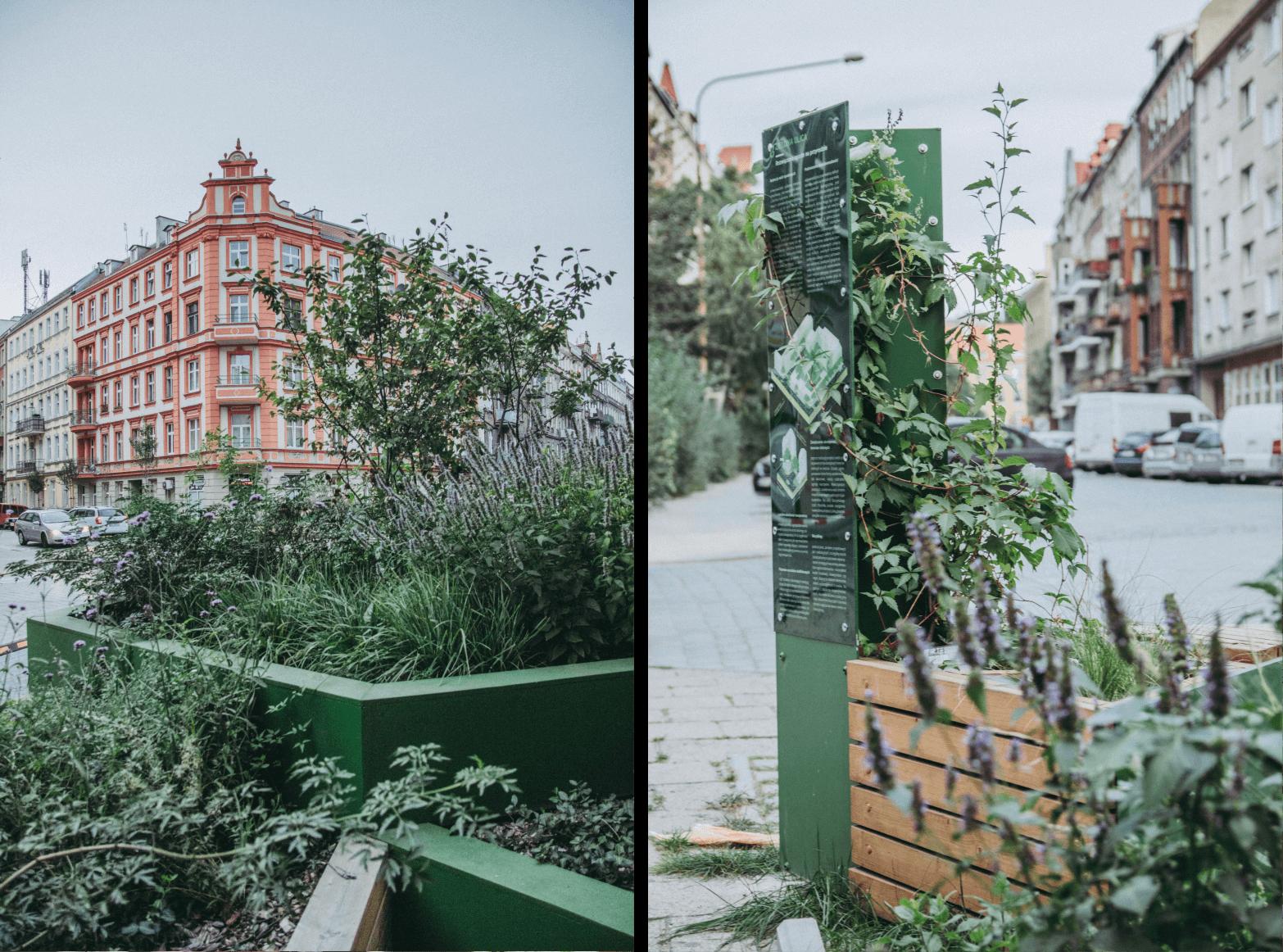 wrocław - miasto gąbka - obserwtorium polityki miejskiej (1)