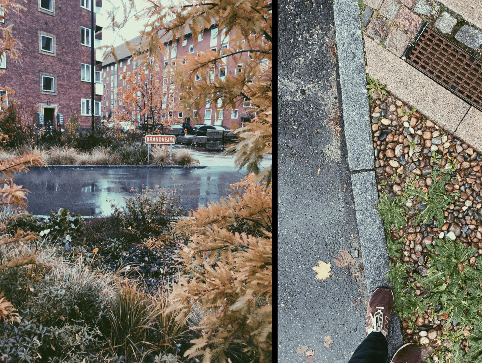 zielona dzielnica- miasto gąbka - obserwtorium polityki miejskiej (1)