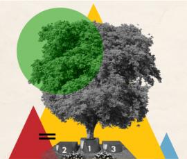 monitoring-zieleni-w-miastach-sentimel